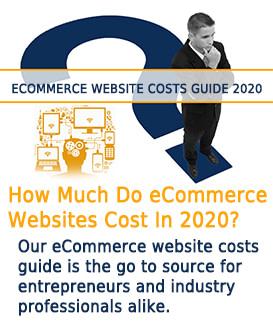 image of entrepreneur contemplating eCommerce website costs