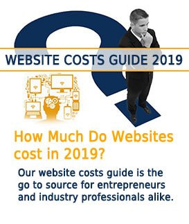 image of entrepreneur contemplating costs of a website