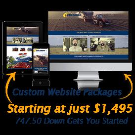 image of custom website starter package offer