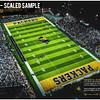48-x27--Large-limited-edition-150-Scaled-Sample-valdosta-vs-colquitt-2020-stadium-shot